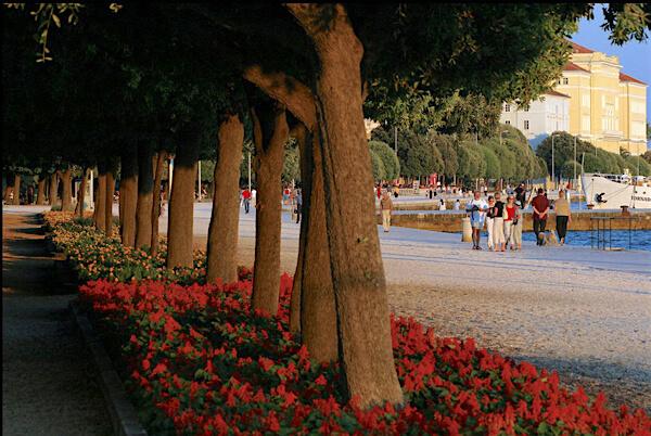 die-meerespromenade-riva-zadar