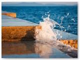 Morske orgulje - 06
