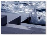 Morske orgulje - 13