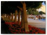 Riva Zadar 08